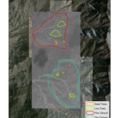 ArcMap : Classifying tree damage using aerial photography, aster data and NDVI Indices